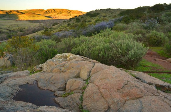 San Diego – Save Mission Trails