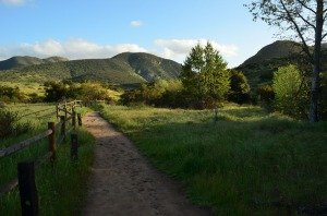 Mission Trails' beautiful hills